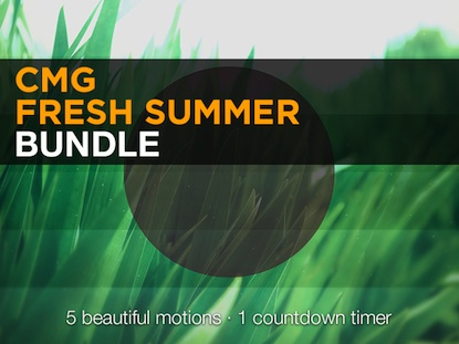 FRESH SUMMER BUNDLE